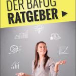 Bafoeg-Ratgeber-2013-eBook-cover-150x150